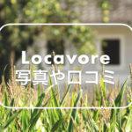 Locavoreの写真や口コミ